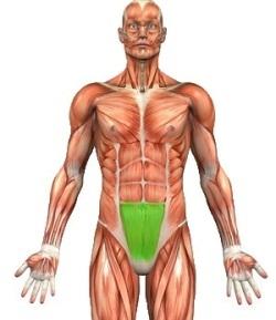 как убрать жир в области желудка упражнения